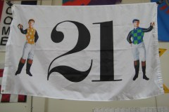 TWENTY ONE DIGITALLY PRINTED FLAG