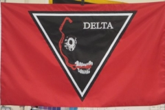Delta custom guidon