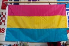 Pansexual Pride Flag hung