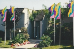 Colorful Attraction Property Flags