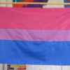 Bisexual Flag